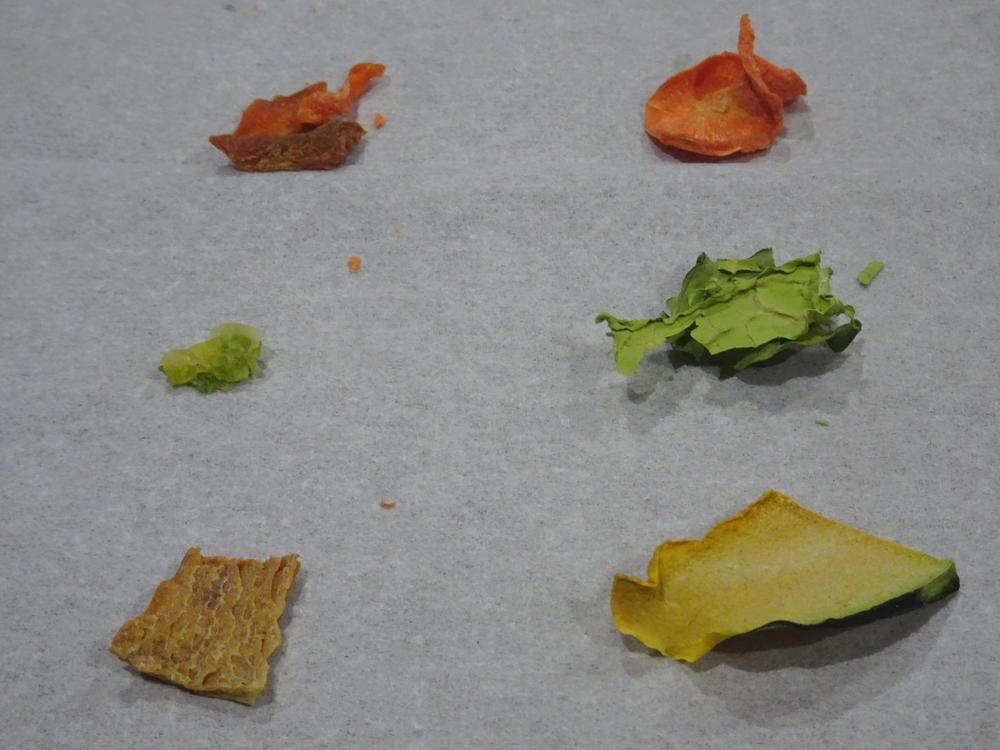 自家製乾燥野菜